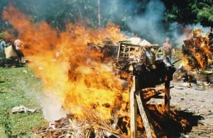 cremationbigflames